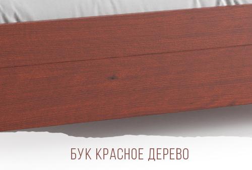Бук Красное Дерево